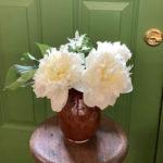 サロンのお花の写真